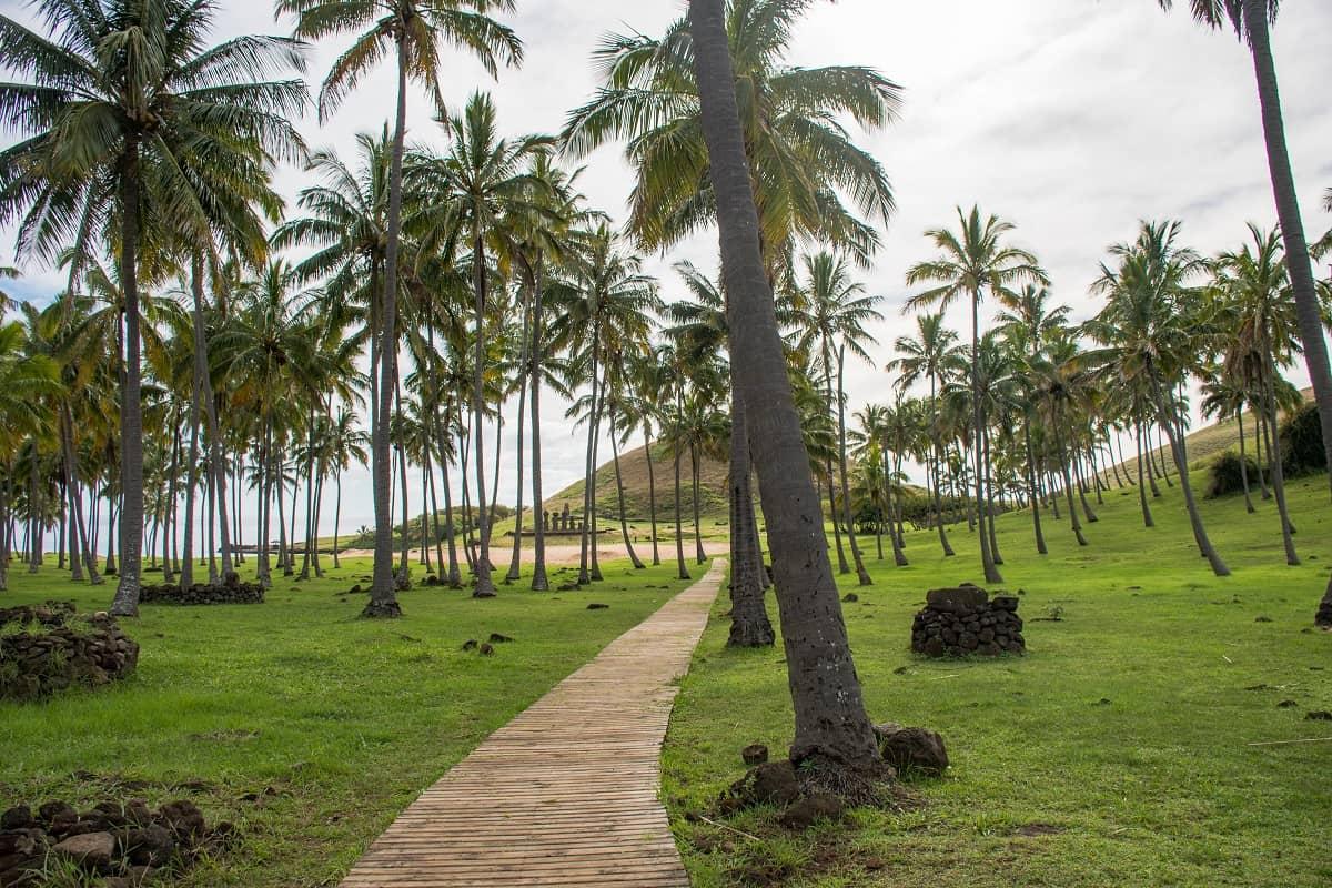 velikonočni otoki 5