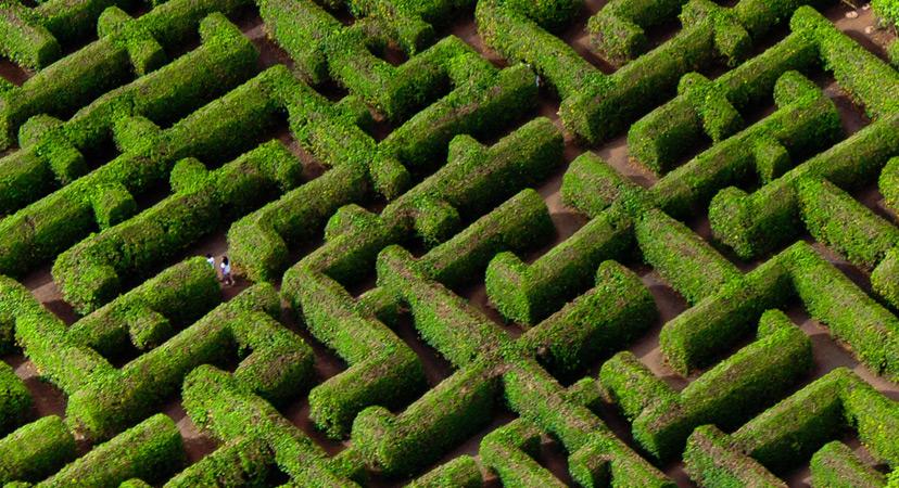 Havaji labirint