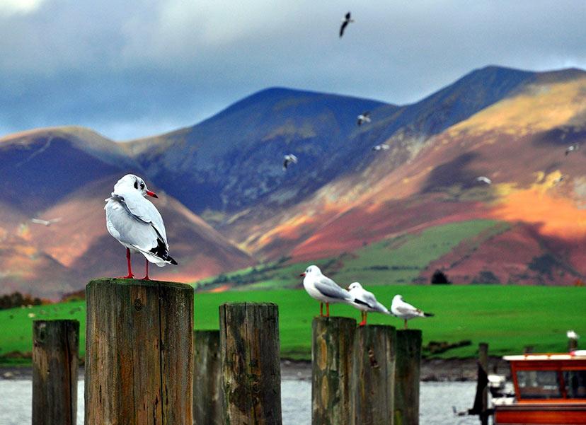 Velika Britanija: Narodni park Lake District