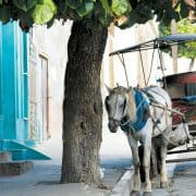 Cuba cienfuegos street scene