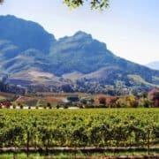Garden route južna afrika 6