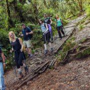 Gora kilimandžaro in treking po poti machame 8
