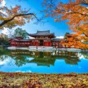 Japonska 8