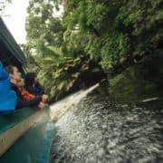 Kostarika 1