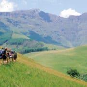 Raziskovanje južne afrike 7