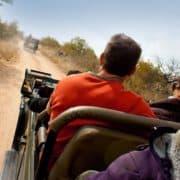 Viktorijini slapovi in kruger park national geographic tura 1