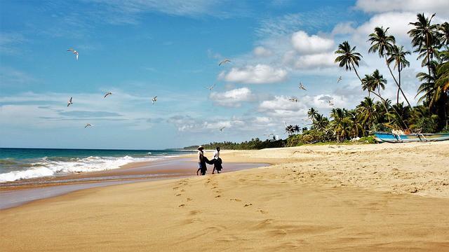 15 razlogov zakaj na srilanko plaza