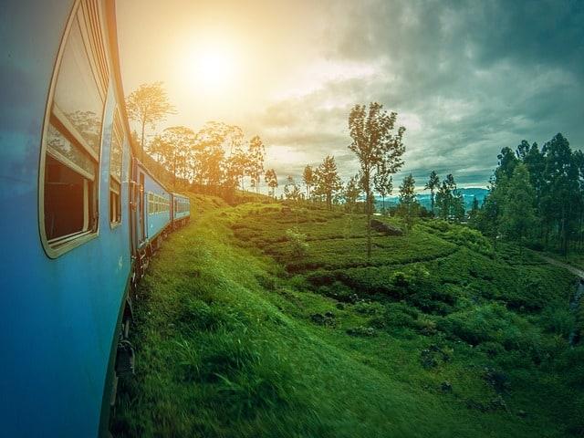 15 razlogov zakaj na srilanko sloni nasadi caja ella vlak