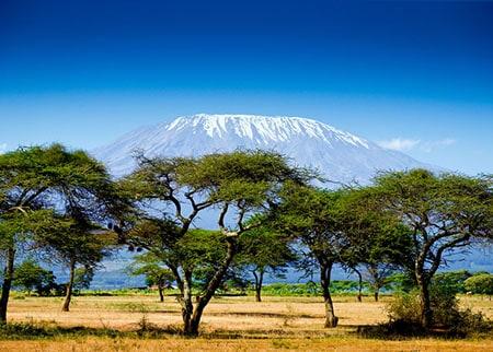 Kilimanjaro africa desert