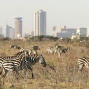 kenija in zanzibar 9