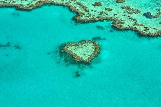 Koralni greben - Popotniki, ki jim je mar za planet