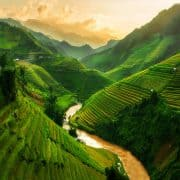23 vietnam shutterstock 521129761