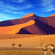 60 namibia shutterstock 754071406