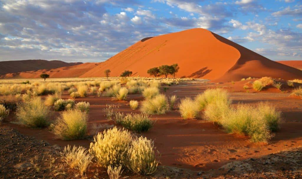 puščavski raziskovalec namibija 3 1
