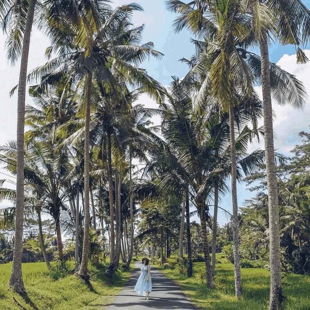 nomago travel instagram bali