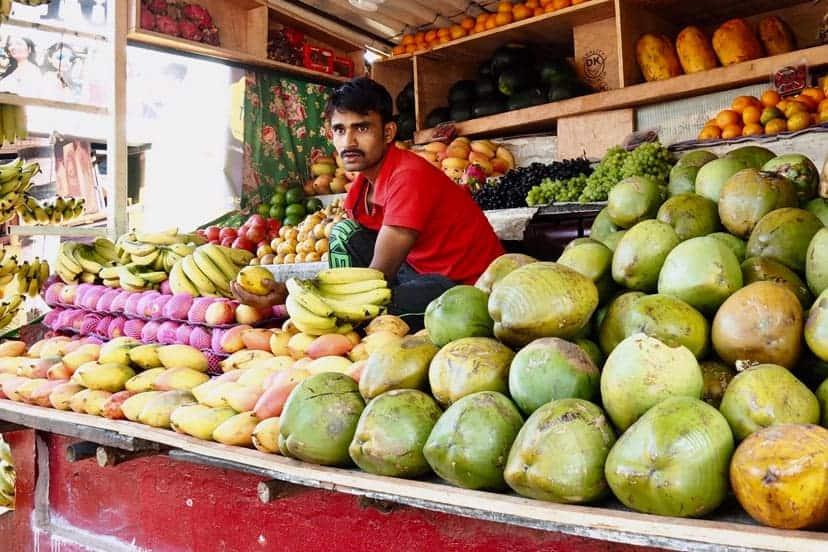 india veganska hrana