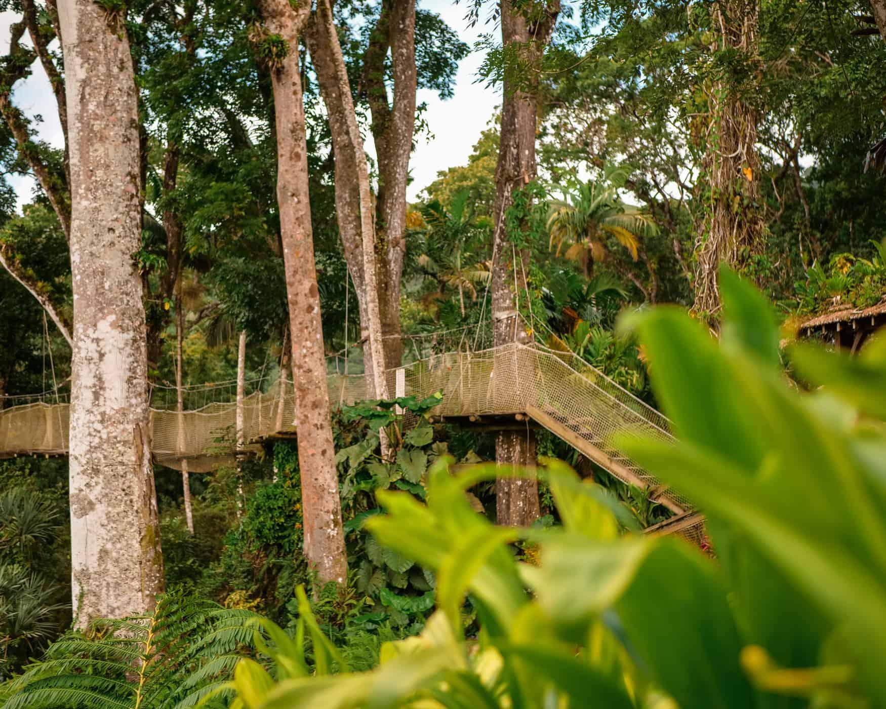 Jardin de Balata, Martinik, Karibi