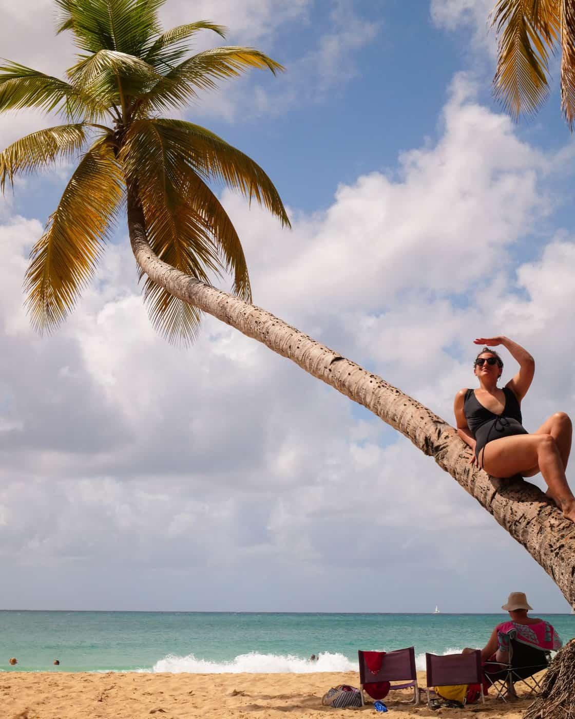Grande Anse des Salines, Martinik, Karibi