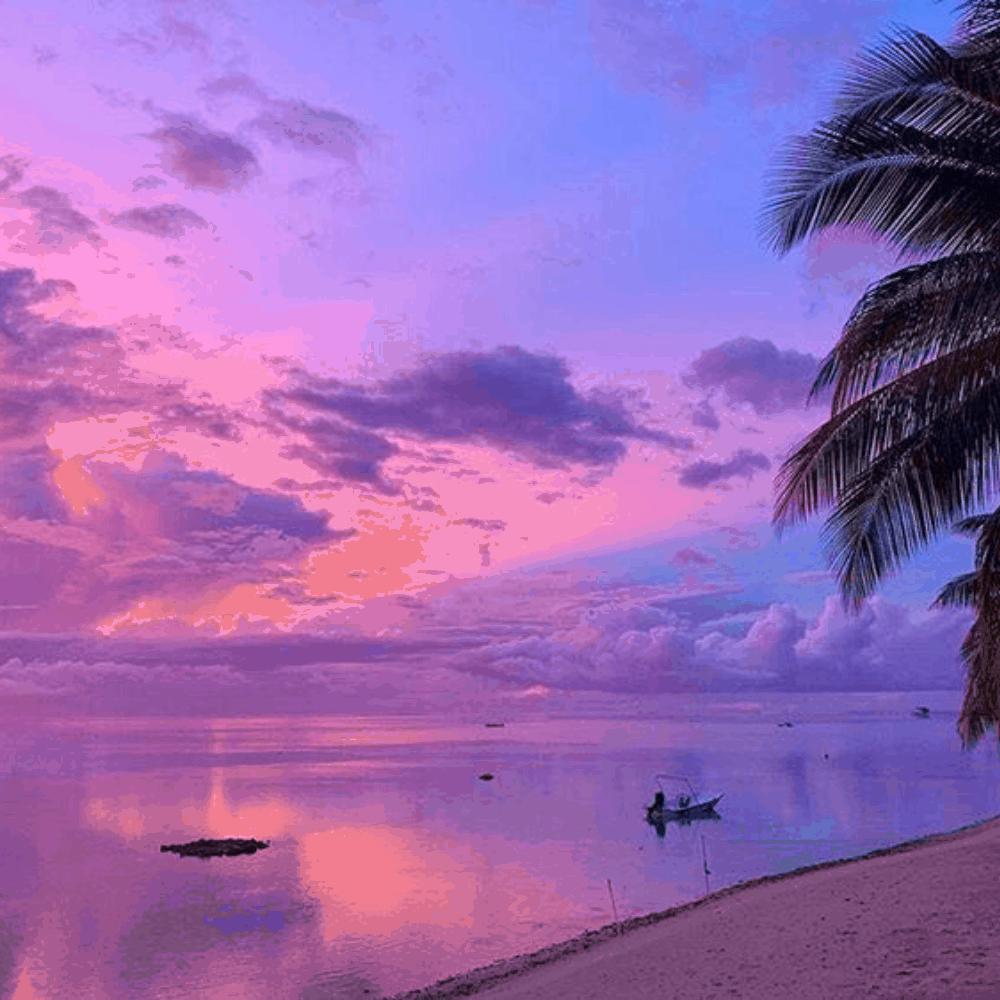 nomago travel instagram polinezija