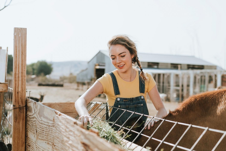 11 najboljih poslova za ljude koji vole putovati svijetom, volonter na farmi