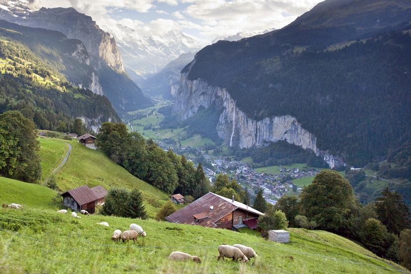 Švicarka, Alpe