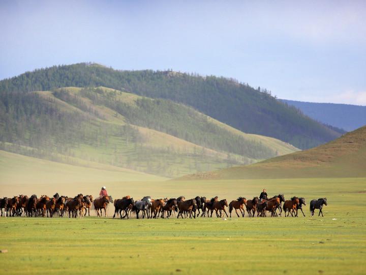 50 najljepših destinacija u Aziji, Arkhangai, Mongolija