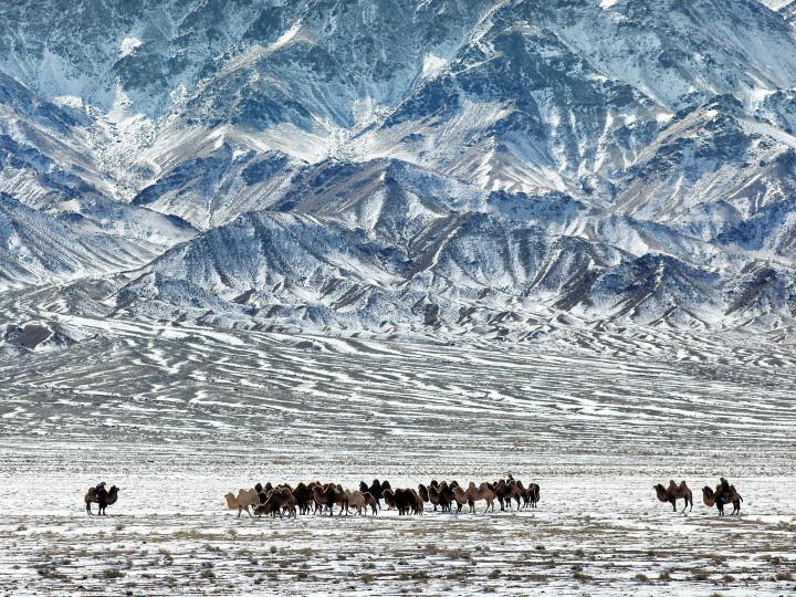 50 najljepših destinacija u Aziji, Pustinja Gobi, Mongolija