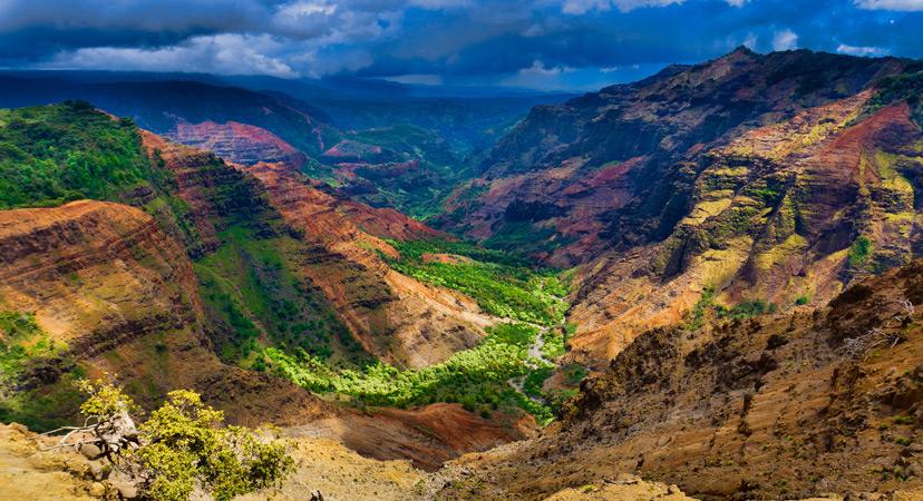 Havaji Waimea