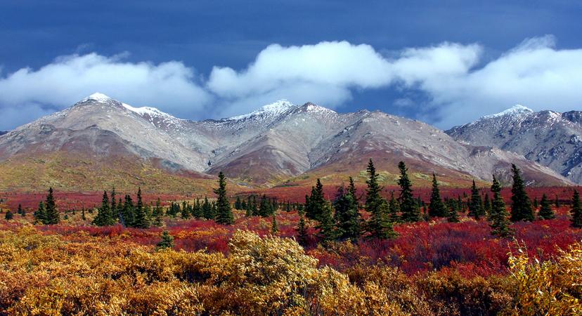 Putovanje na Aljasku
