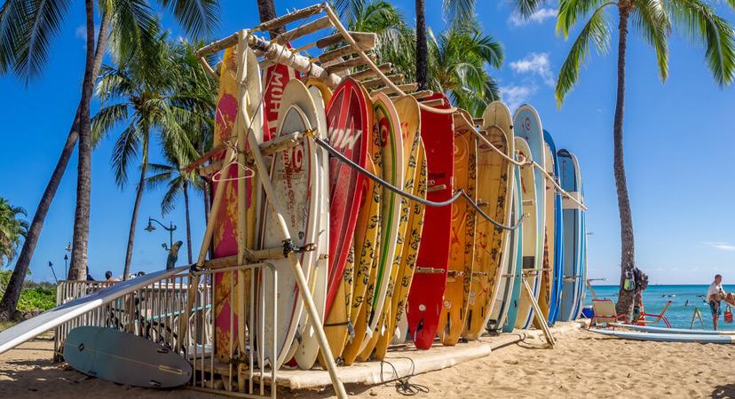 Havaji surfboards