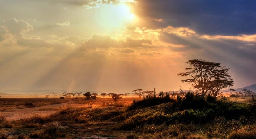 jeftine aviokarte za Afriku