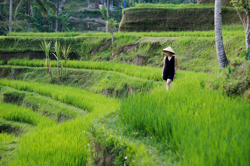Intervju z Ajdo Sitar, Bali, Ubud, Kenanga