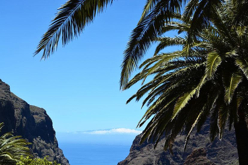 Novo leto na plaži: Tenerife.