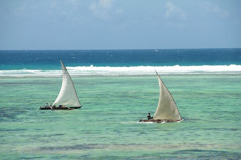 Tanzanija, Zanzibar