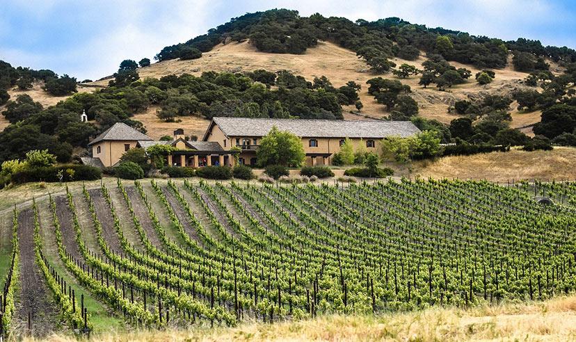Vinska klet Robert Mondavi, Napa Valley, California, ZDA